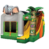 Jungle Combo